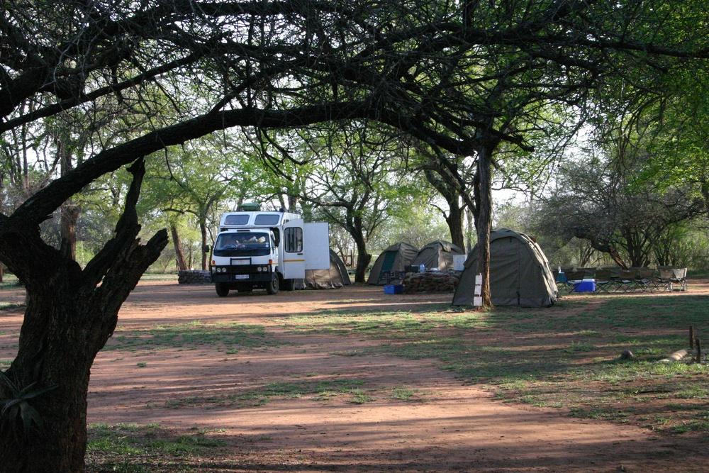 Hlane Royal National Park Game Parks In Swaziland